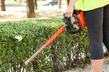 A gardener trims a bush with a brush cutter. Park maintenance