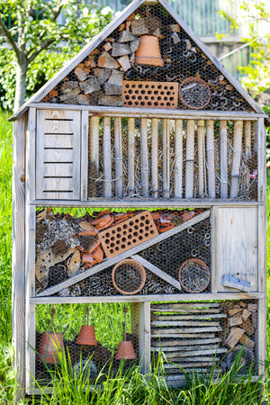 Insect hotel, shelter for wild insects