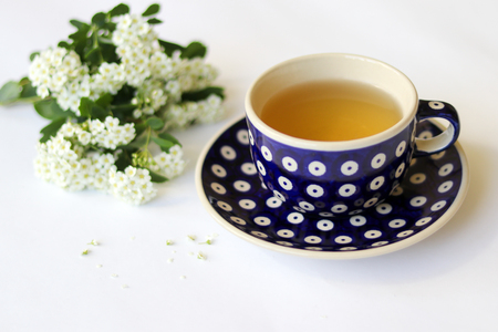Blue dotted ceramic saucer and cup with green tea on white background with white little flowers. Stock Photo