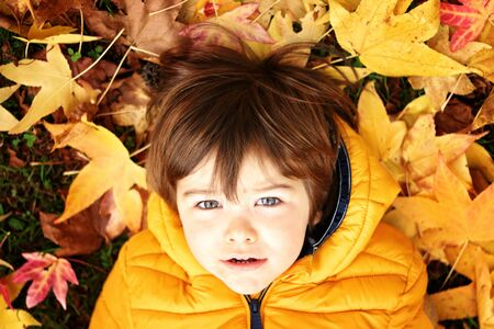 Portrait of cute little toddler boy in bright yellow jacket lying on gras with colorful yellow and pink autumn leaves around looking at camera. Fall season lifestyle.