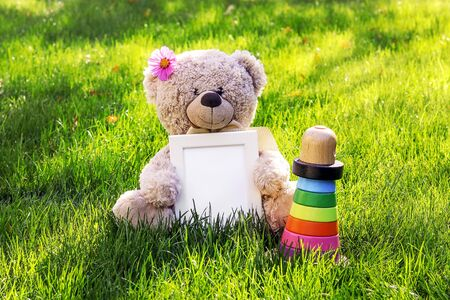 Mockup. Soft beige teddy bear toy with pink cosmos flower on head holding white clean mock up frame with copy space sitting on green grass with bright colorful wooden pyramid outdoors at sunny autumn morning. Empty space. Baby children concept.