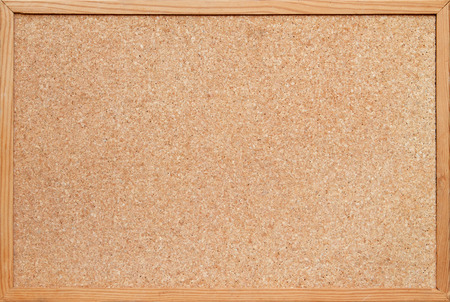 blank corkboard / bulletin board with a wooden frame