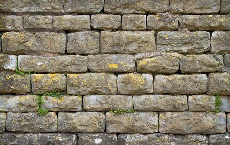 cotswold: primo piano di un muro di pietra Cotswold con erbacce e licheni che crescono da esso in Inghilterra rurale