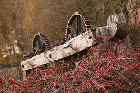 cog wheels: Cog wheels from an old Georgian wool mill overgrown with red berrys, in the Cotswolds, England Stock Photo