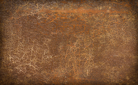 crust crusty: Very old and weathered brown antique leather with a vignette
