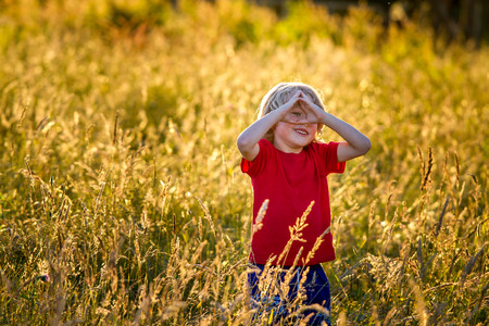 age 5: cute blonde haired  5 year old caucasian boy standing in a field at sunset being backlit by the setting sun. Stock Photo