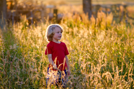 cute blonde haired  5 year old caucasian boy standing in a field at sunset being backlit by the setting sun. Stock Photo