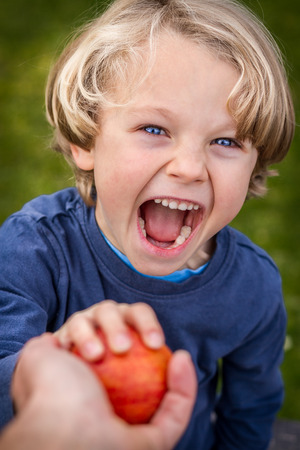 close up of 5 year old child with blonde hair and blue eyes reaching up towards the camera to grab an apple being offered to him Stock Photo