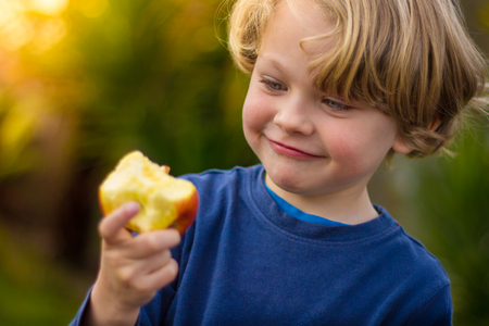 close up food: close up of a a cute blonde child wearing a blue shirt  eating  an apple with an out of focus yellow green background