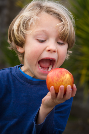 close up of a a cute blonde child wearing a blue shirt  about to take a bite of an apple with an out of focus yellow green background