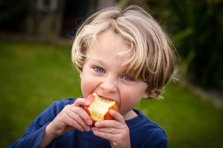 close up of a a cute blonde child wearing a blue shirt  taking a bite of an apple