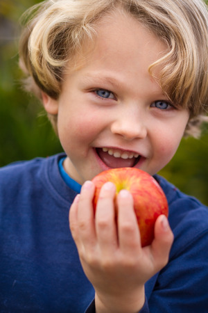 close up of a a cute  smiling blonde child wearing a blue shirt  about to take a bite of an apple Stock Photo