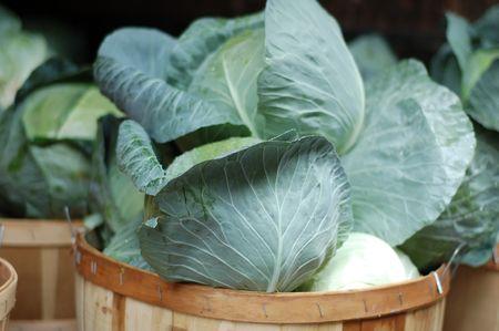 heads of cabbage in basket - farmers market 版權商用圖片