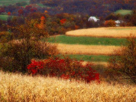 Pennsylvania Farmland