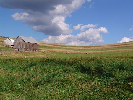Pennsylvania farmland with puffy clouds and barn 版權商用圖片