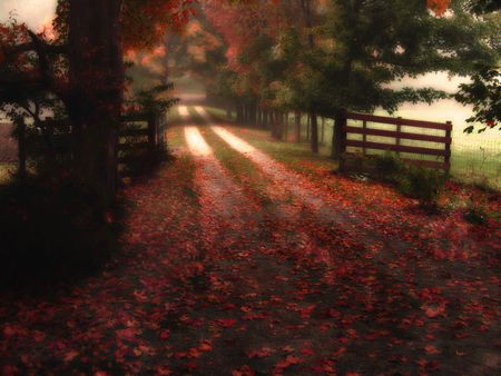colorful autumn country road - dreamy image