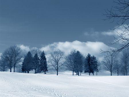 winter landscape - trees snow sky 版權商用圖片