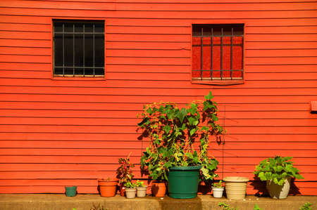 garden growing in pots outside city home  Stock Photo