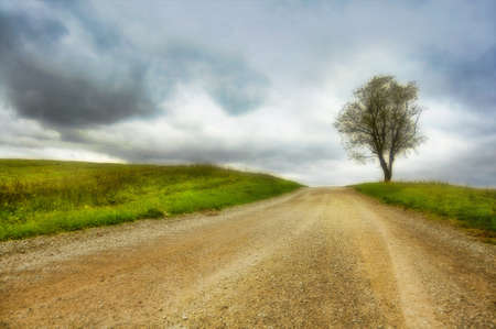 scenic country road with single tree and heavy clouds Stock Photo