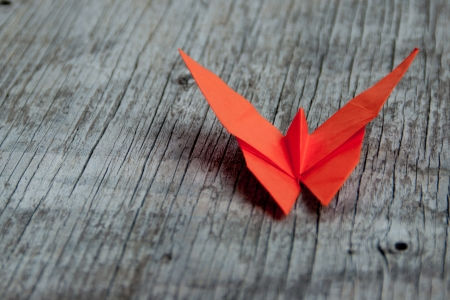 Orange origami Butterfly laying on wood