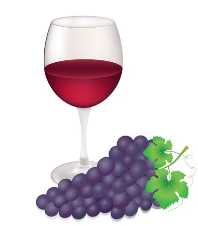 Illustration of wineglass and grapes isolated on white background   Illustration