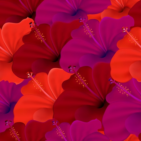 beautiful red hibiscus flower: Illustration of  seamless of hibiscus flower Illustration