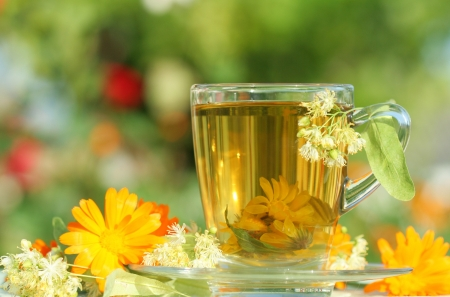 marigold: Close-up of herbal tea