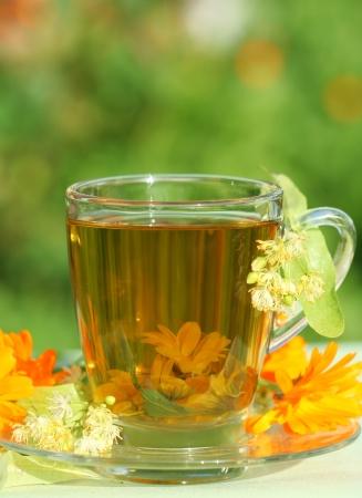 garden marigold: Close-up of herbal tea