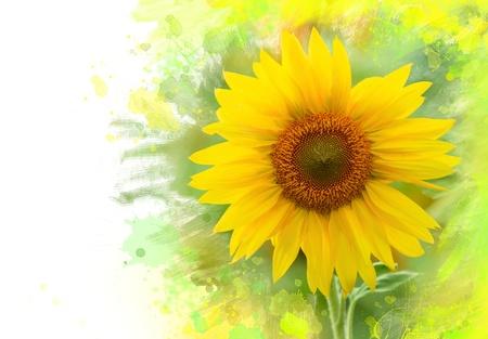 yellow  agriculture: Primer plano de girasol. Acuarela efecto Foto de archivo