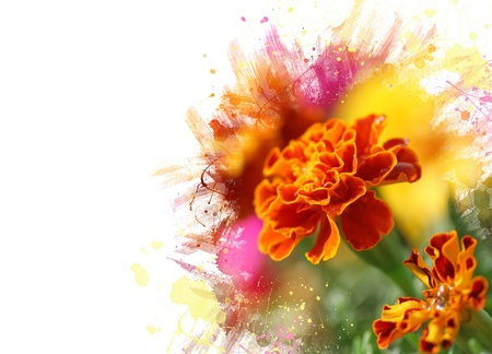 Close up of tagetes flower.Watercolor effect photo