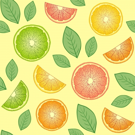 oranges: Vector Illustration of seamless pattern with abstract citrus fruits