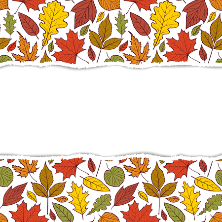 Pattern with autumn leaves Illustration