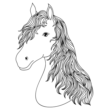 Hand drawn head of horse on white background.Coloring page for children and adult.Vector illustration.