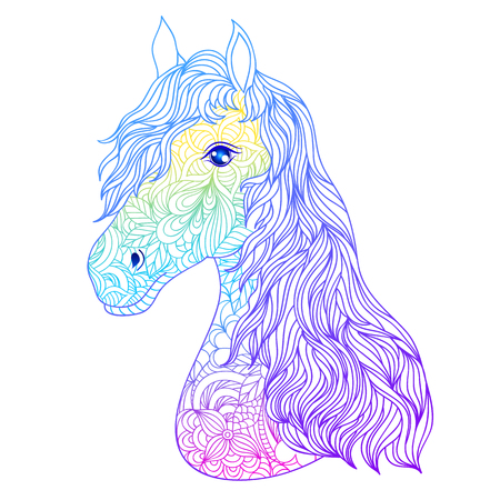 Hand drawn head of horse on white background.Vector illustration.