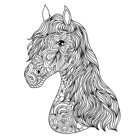 Vector illustration of hand drawn horse on white background.
