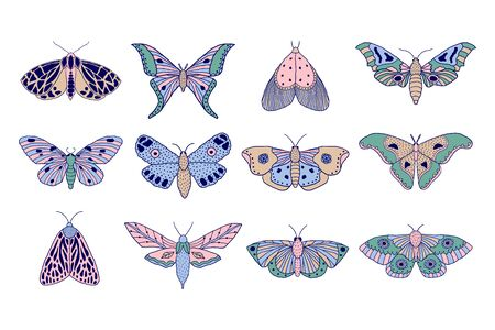 Set of hand drawn colorful moths and butterflies in doodle style on white background Stock Illustratie