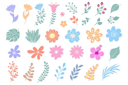 Collection of flowers, leaves and plants on white background. Elements for design.