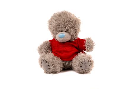 soft toy: Big Bear soft toy isolated on white background