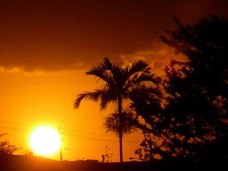 FL Sunset Фото со стока