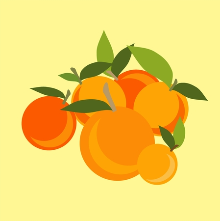 Mandarin set. Vector illustration on black fnd white background