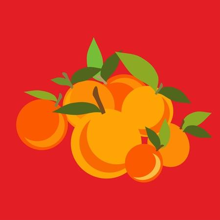 Mandarin set. Vector illustration light  background. Vector illustration Illustration