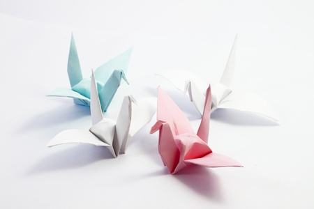 Origami paper crane on white background photo