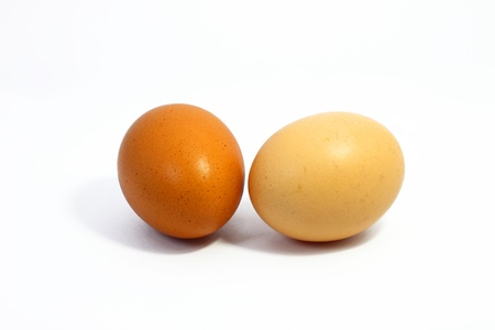 Two brown eggs on white background photo