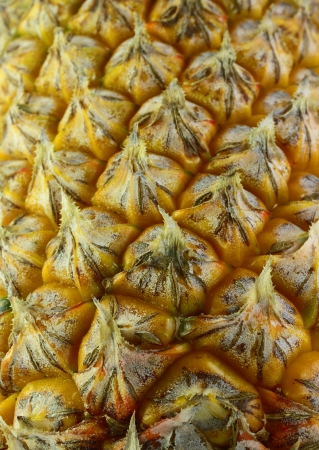 Cloes up Ripe pineapple