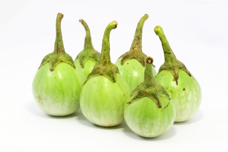 Eggplant green with white background Stock Photo
