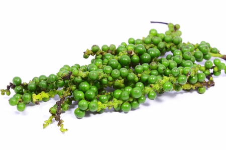 Fresh peppercorns with white background photo