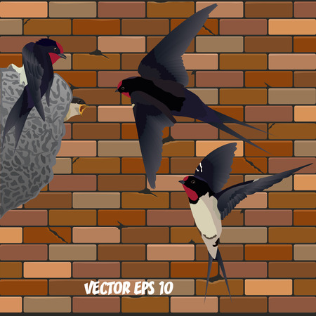 Realistic swallows next to the nest with a nestling against the backdrop of a brick wall