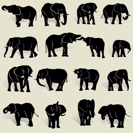 A set of silhouettes of African elephants in various postures and shadows, on light yellow backgroud Illustration