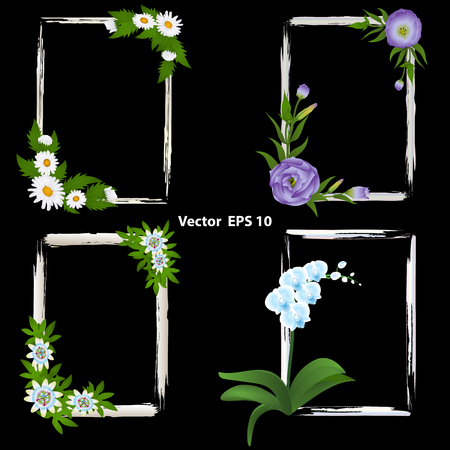 A set of frames for photos. decorated with flowers - orchid, Passiflora, Eustoma and Chamomile. Vector illustration Illustration