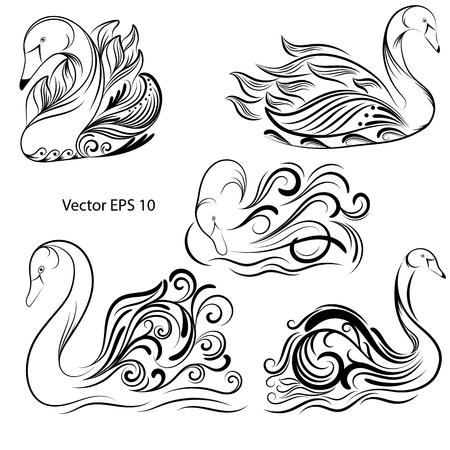 set of hand-drawn swans, black line on white background, vector illustration